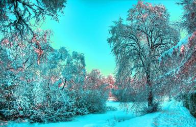 Нова Година в СПА курорта Пролом Баня